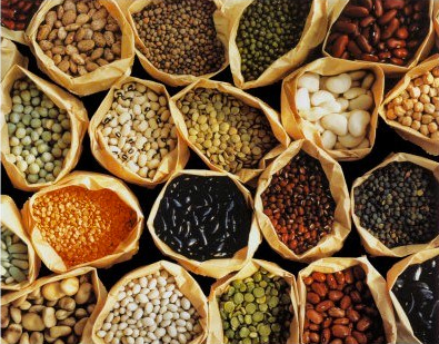 Add Plant Protein in your Diet
